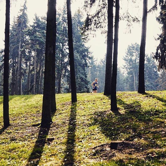 Las w miecie  biegweganski parkskaryszewski nietylkomaraton Warsaw instarunner nbrteamhellip